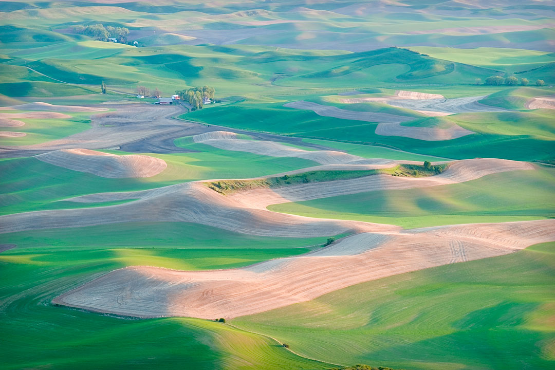 Palouse at Sunset
